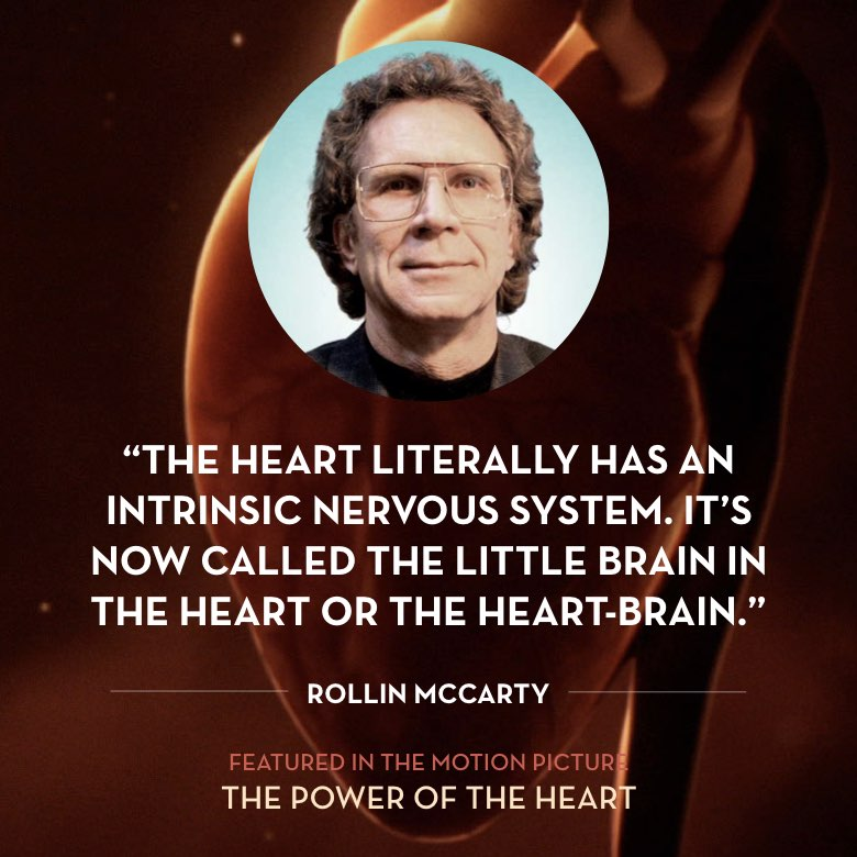 The heart literally has an intrinsic nervous system. It's now called the little brain in the heart or the heart-brain. -  Rollin McCraty
