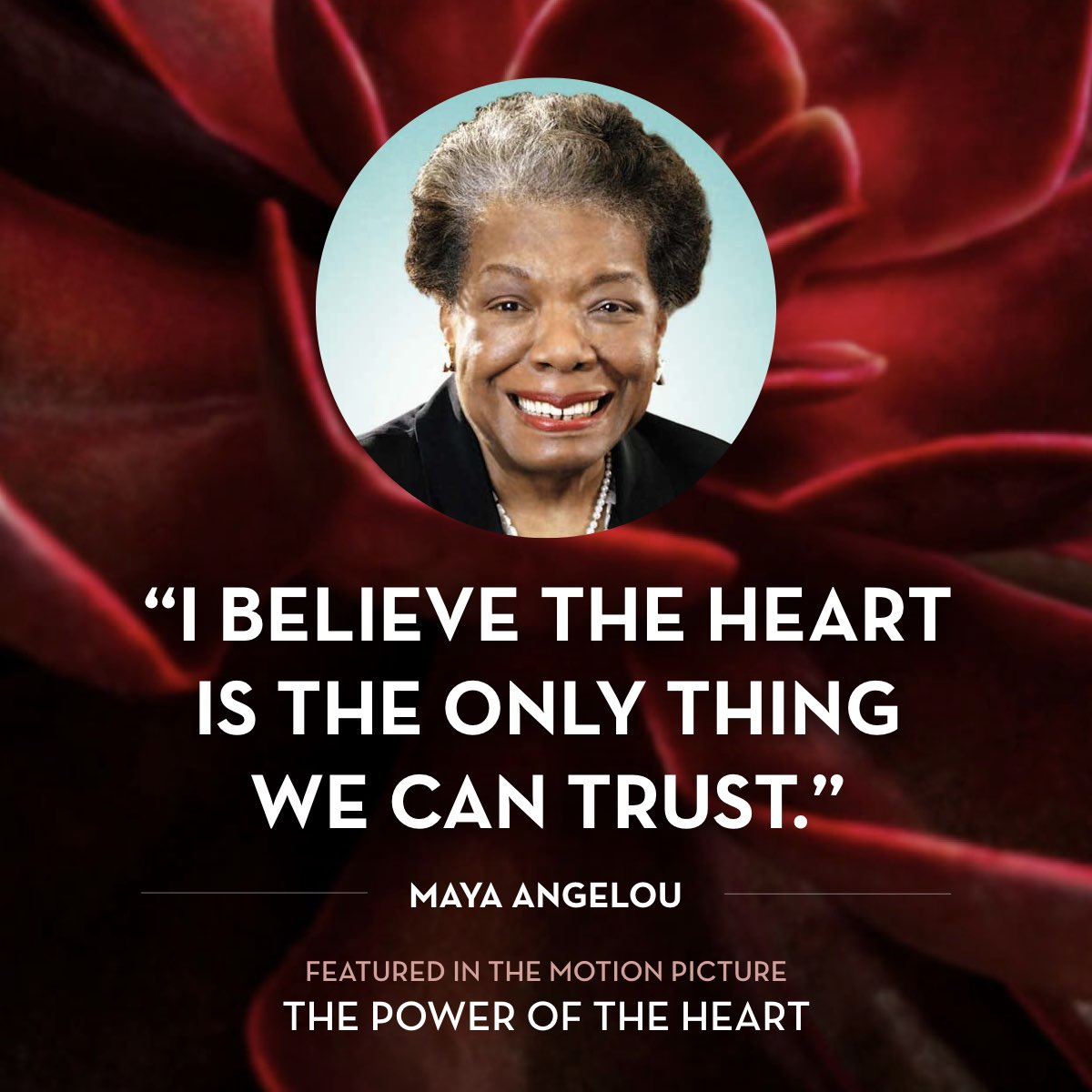 I believe the heart is the only thing we can trust. -  Maya Angelou