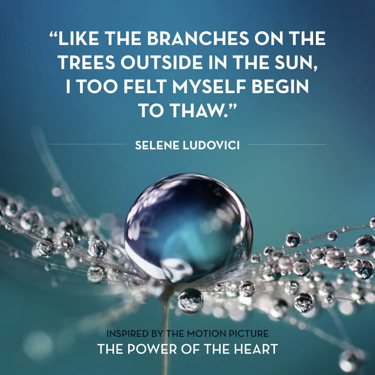 From 'Unfreezing The Heart' by Selene  Ludovici. Read the full story at thepoweroftheheart.com